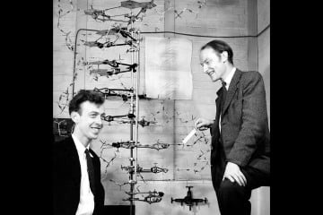 Watson and Crick