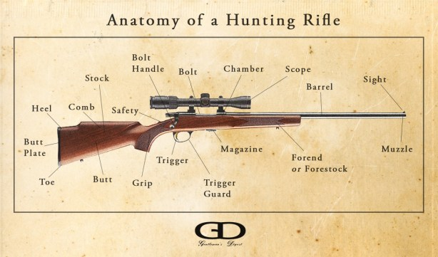 Anatomy of a Hunting Rifle