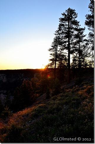 06 Sunset over Transept Canyon Annular solar eclipse NR GRCA NP AZ (678x1024)