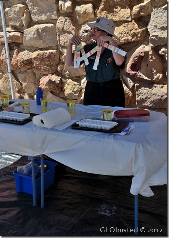 04e AIR Nancy McKay demo on Lodge veranda NR GRCA NP AZ (727x1024)