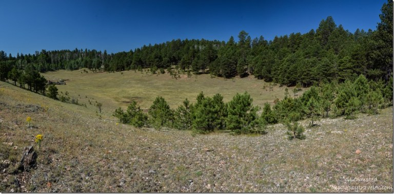 Mile & a Half Lake SR212  Kaibab National Forest Arizona