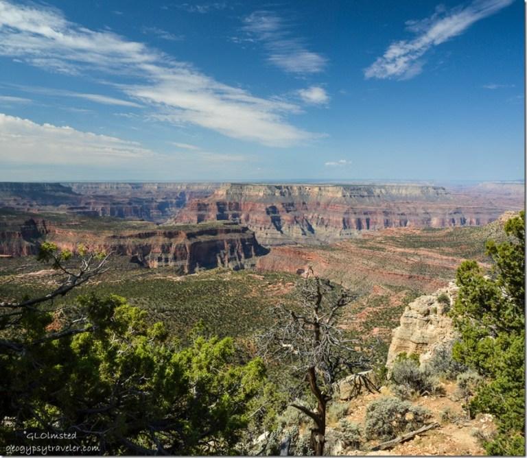 Powell Plateau Crazy Jug Point Kaibab National Forest Arizona