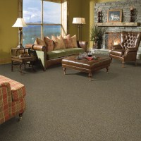 Bliss Indulgence Carpet: Soft and Strong