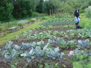 jardins solidaires jamagne kiwanis 2018 (2)