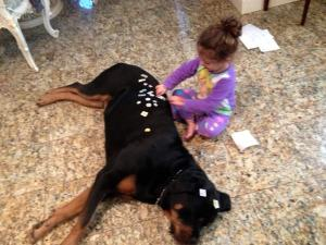 Kid friendly male Rottweiler.
