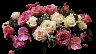 Wallpaper : roses, orchids, flowers, bunch, black background 1920x1080 - wallup - 1079494 - HD ...