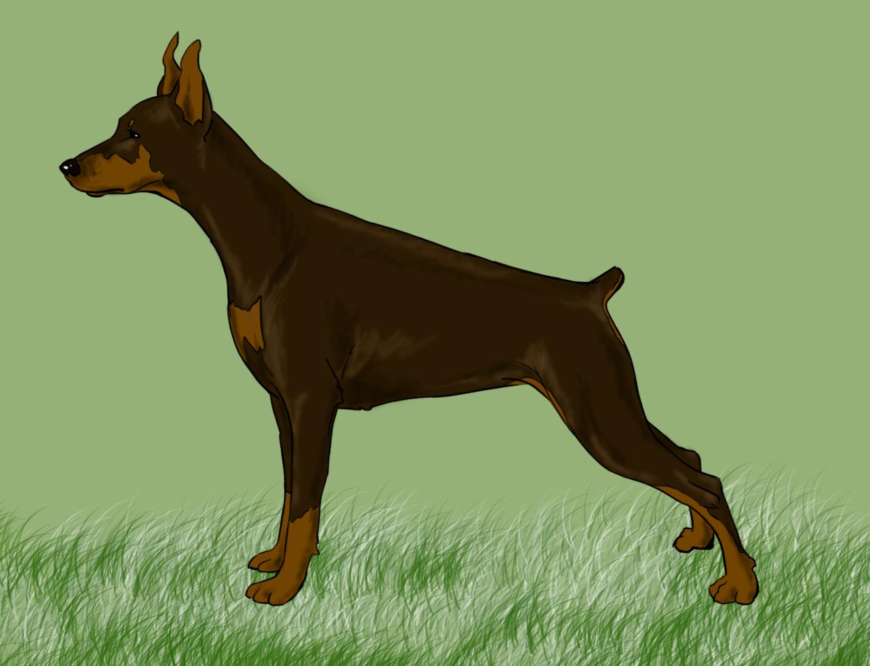Irresistible Personal Use Pitbull Pug Mix Size Black Pitbull Pug Mix Easy Ways To Draw A Dog Angry Pitbull Drawing At Free bark post Pitbull Pug Mix