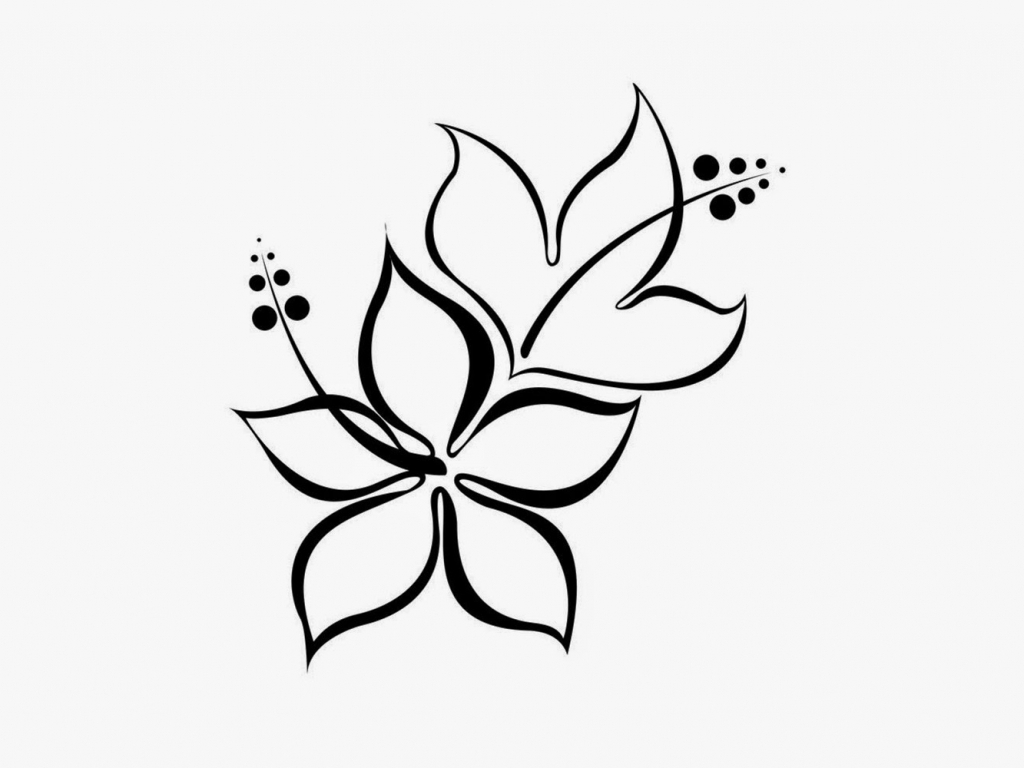 Flowers Art Drawing at GetDrawings com   Free for personal use     1024x768 New Pencil Flower Arts Photo Simple Flower Designs For Pencil