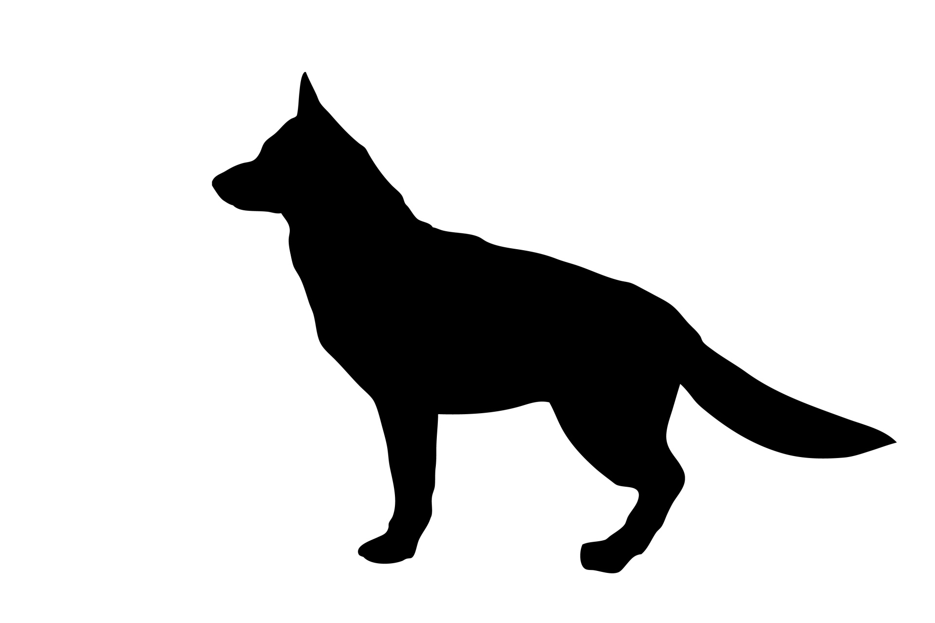 State German Shepherd Dog Silhouette Free Stock Photo Sitting German Shepherd Silhouette At Free Black German Shepherd Sitting German Shepherd Sitting Images bark post German Shepherd Sitting
