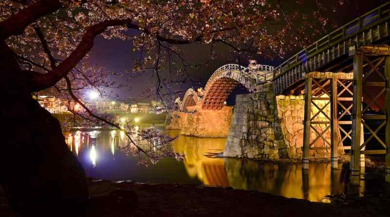 Kintai-kyo Bridge at night during cherry blossom season by Tori Maas