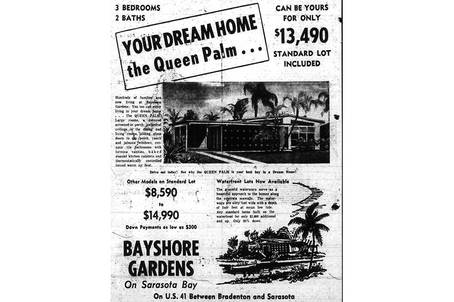 09-Queen-Palm