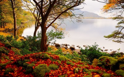 Beautiful Landscape Backgrounds (67+ images)