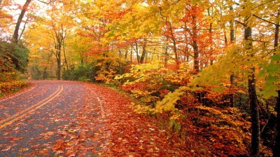 Cool Fall Backgrounds (69+ images)
