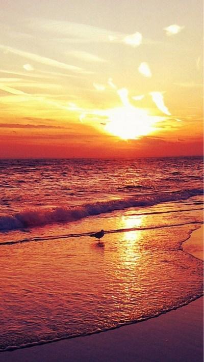 Beach iPhone Wallpaper HD (90+ images)