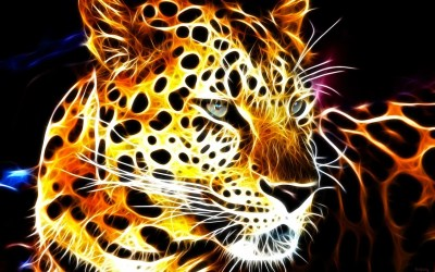 Cool Animal Backgrounds (66+ images)