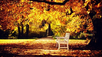 Autumn HD Wallpapers 1080p (76+ images)