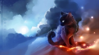 Cool Cat Wallpaper (71+ images)