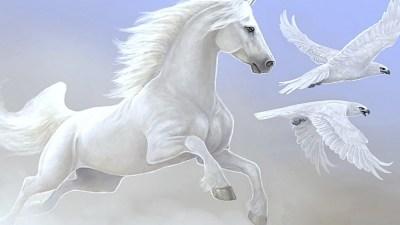 White Horse Wallpaper (68+ images)