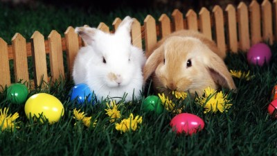 Easter Wallpapers for Desktop (64+ images)