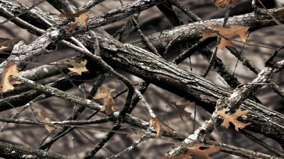 Realtree Camo Wallpaper for Walls (58+ images)