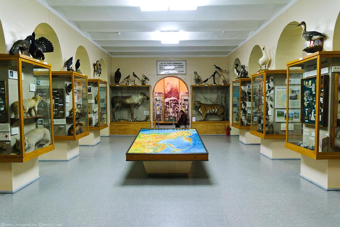фото хабаровск краеведческий музей имени Н.И. Гродекова