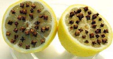 gvozdika s limono,