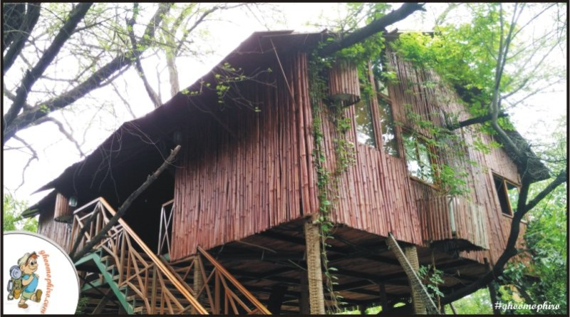 5 Best Treehouses of India