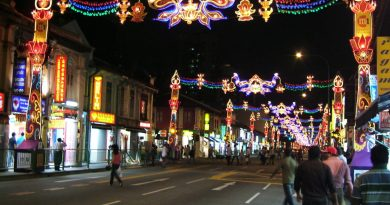 Little_India-_Serangoon_Road_Singapore_Diwali_2009