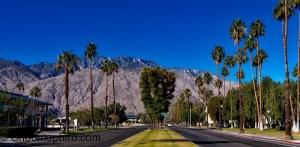 -Palm Springs - Generic-3
