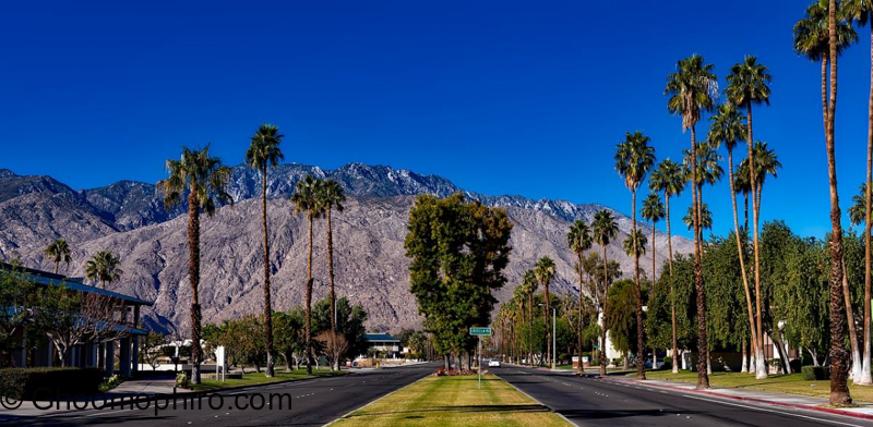 Exploring The Desert City of Palm Springs, California