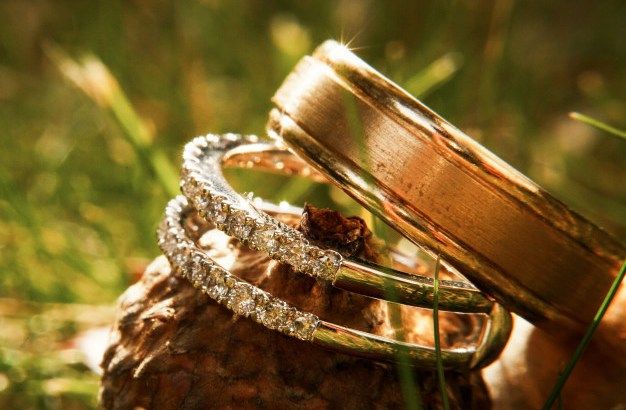 gorgeous-wedding-rings-sparklie-on-acorn_8353-704