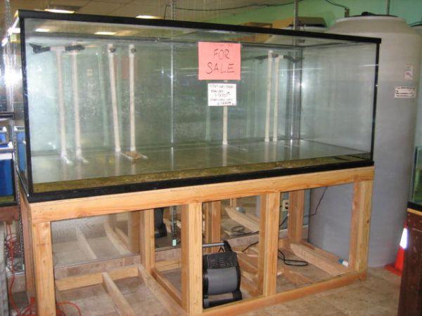 giantfishtanks.blogspot.com/2012/02/450 gallon aquarium fish tank.html