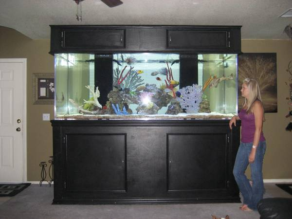 100 gallon fish tank for sale in california 2017 fish