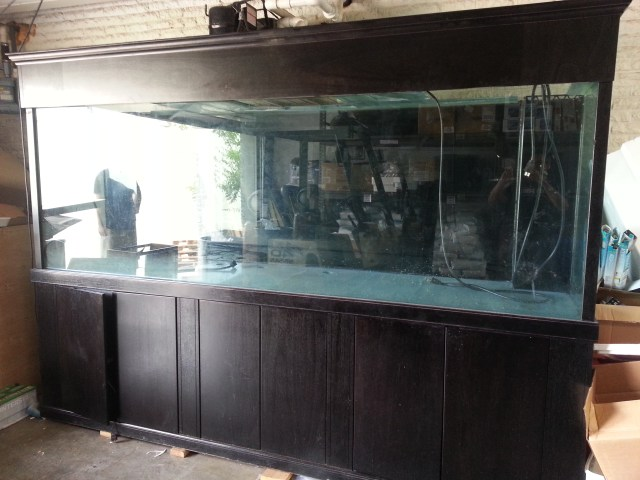 giant aquariums   Tanks 300gal.  by Trifisher   Page 24