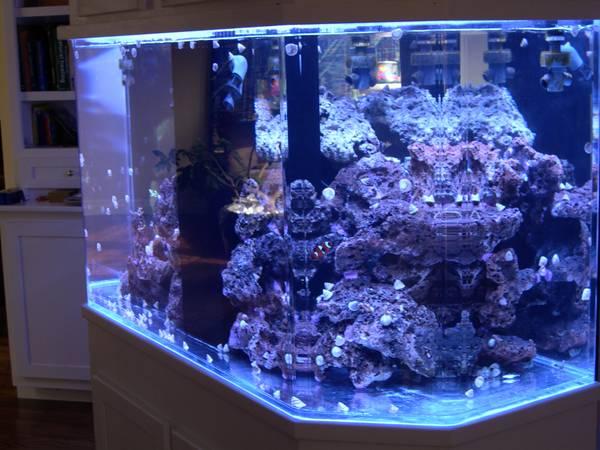 Aquarium For Sale Near Me 500 1000 Gallon Propane Tanks