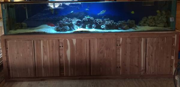 400 gallon aquarium with custom built red cedar stand bought aquarium