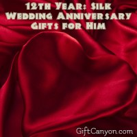 12th Year: Silk Wedding Anniversary Gifts for Him