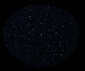 GIGASTAR®SKY キット版(5等星)夏の星座です。 天の川がまだ再現されていないのが寂しいですが、製品版では、ここまでバックライトを明るくして、星の綺麗な場所での星空を再現した場合には、天の川が見えるようになります。