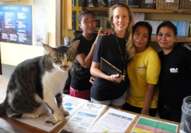 Welcome to Gili Divers Hotel