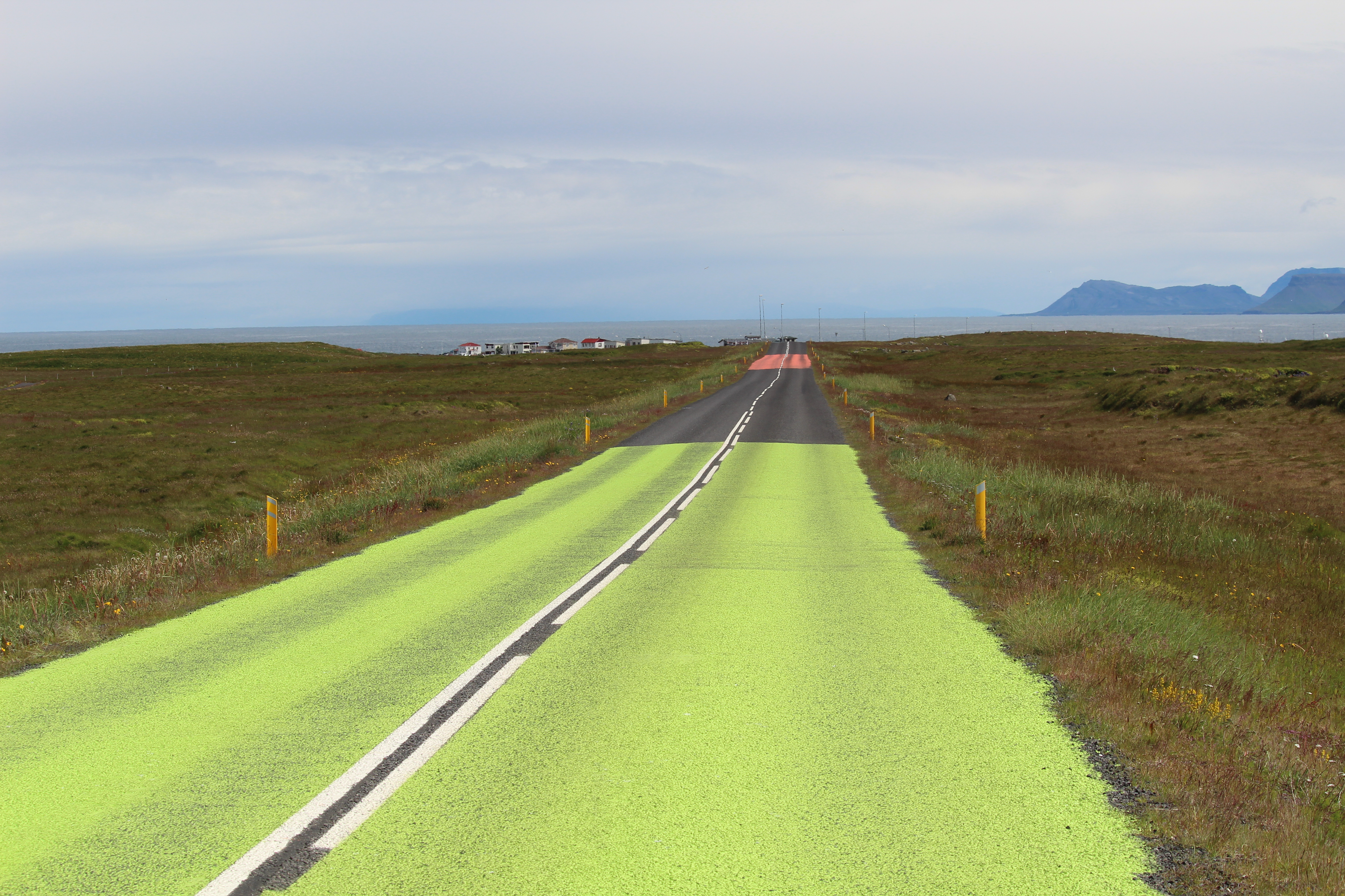 Road to protect the babybirds at Snæfellsnes Iceland