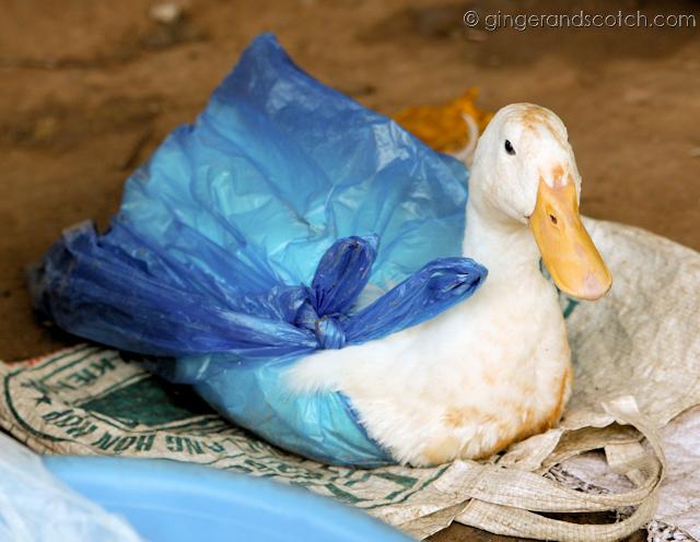 Mekong Homestay - Market - Duck in Bag