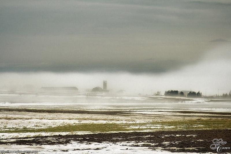20080109130348_brouillard.jpg