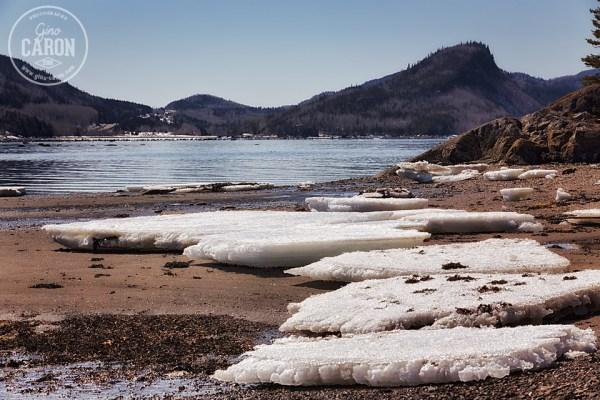 Blocs de glace au Parc du Bic
