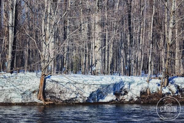 Érablière et bord de rivière.