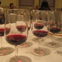 LCBO Intro to Wine Class
