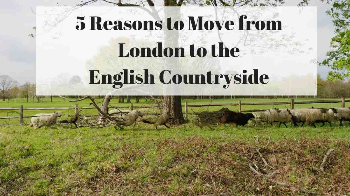 Moving from London to the Countryside: 5 Reasons Why You Should Consider It