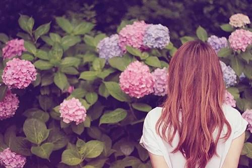 たくさんの紫陽花(あじさい)と女の子のフリー写真素材(商用可)