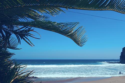 ヤシの木の屋根とキレイな海のフリー写真素材(商用可)