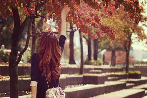 紅葉の中にある赤い実に触れてみた女の子のフリー写真素材(商用可)