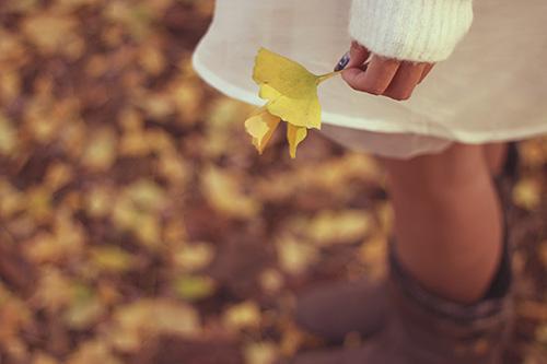 落ち葉を持ちなんとなくエモい雰囲気の女の子のフリー写真素材(商用可)